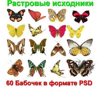 программы для растровых изображений: