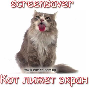 Заставка, Скринсейвер: Пушистый котик лижет экран монитора