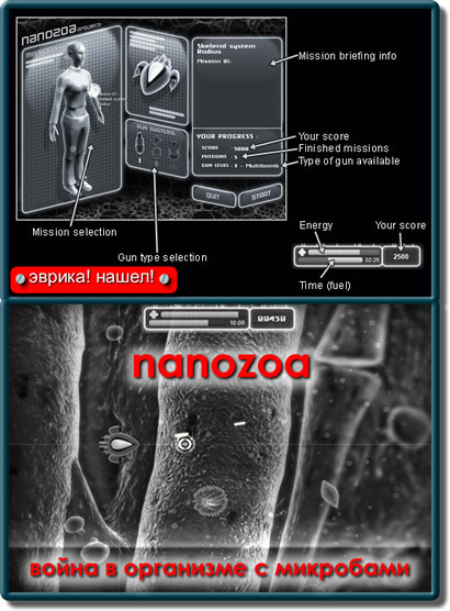 Нанозоа - битва внутри организма с бактериями и другими микробами