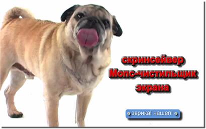 собака, лижущая экран монитора - заставка