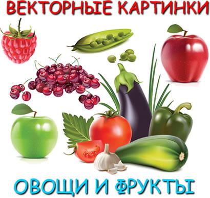векторный клипар, картинки, изображения, овощи и фрукты, формат eps
